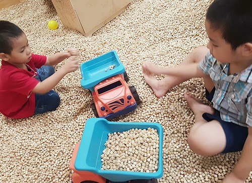 Hạt Gỗ Đồ Chơi - Sự Lựa Chọn Hàng Đầu Cho Các Khu Vui Chơi Trẻ Em